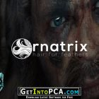 Ornatrix for 3ds Max Free Download